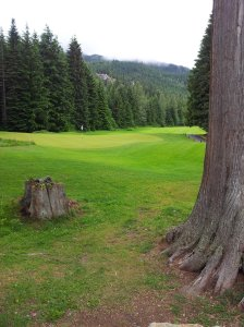 Overlooking the 18th green at Whistler GC, you don't really get a feel for what you're in for, but that's a good thing, as you want to find out about it as you go.  —Photo by Mike Davies